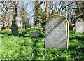 TG2408 : The grave of Henry James Dew by Evelyn Simak