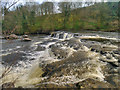 SE0088 : Aysgarth Upper Falls by David Dixon