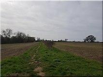 SE6853 : Bridleway to Dunnington by DS Pugh