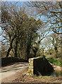 SX7063 : Gidley Bridge by Derek Harper