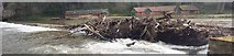 NZ2742 : Forestry Debris on a Weir on the River Wear by Les Hull