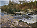 SE0188 : River Ure, Aysgarth Lower Force by David Dixon