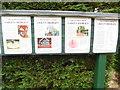 SU9391 : Information Boards at Bekonscot Model Village (2) by David Hillas