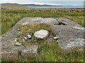 HY2509 : WWII remains, Brinkies Brae, Stromness, Orkney by Claire Pegrum