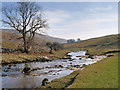 SD8780 : River Wharfe, Langstrothdale by David Dixon