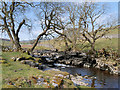 SD8880 : River Wharfe, Langstrothdale by David Dixon