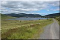NX4578 : Track descending towards Loch Dee by Graham Robson