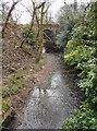 NS5574 : Bridge over the Allander Water by Richard Sutcliffe