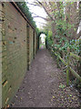 TQ2158 : Footpath to the downs by Hugh Craddock
