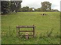 SS8579 : Stile on public footpath, Tythegston by eswales