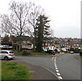 ST3090 : Two deciduous trees on a Malpas corner, Newport by Jaggery