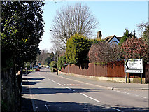 SO9096 : Goldthorn Hill south-west of Blakenhall in Wolverhampton by Roger  Kidd