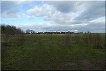 SE6350 : Field beside Windmill Lane by DS Pugh