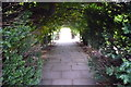 SO5152 : Arches at Hampton Court Gardens (Hope-Under-Dinmore) by Fabian Musto