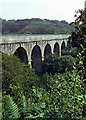 SX0557 : Treffry Viaduct, Luxulyan Valley, 1964 by Alan Murray-Rust
