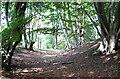 TL4300 : Ambresbury Banks by Sean Davis