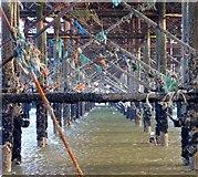 TQ3103 : Beneath the Palace Pier, Brighton by Simon Carey
