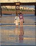TQ3103 : Albion Beach, Brighton by Simon Carey
