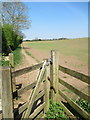 SO9774 : Kissing gate and footpath off Cottage Lane Marlbrook by Roy Hughes