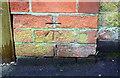 SK5742 : Benchmark on wall pier beside gate of #47 Mapperley Hall Drive by Luke Shaw