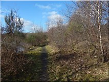 NS3977 : Path around Dalquhurn Point by Lairich Rig