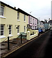 SX9372 : Houses on the south side of the village green, Shaldon by Jaggery