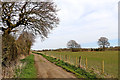 SO9095 : Staffordshire pasture north-west of Sedgley by Roger  Kidd