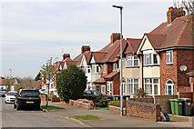 SO9096 : Housing in Westminster Avenue in Penn, Wolverhampton by Roger  Kidd