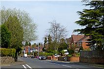 SO9095 : Mount Road in Penn, Wolverhampton by Roger  Kidd