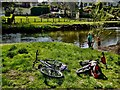 H4772 : Bikes lying along the Camowen riverbank at Cranny by Kenneth  Allen