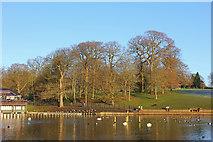 SE3337 : Waterloo Lake by Wayland Smith
