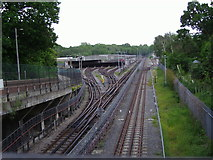 TQ2788 : Highgate sidings by Wood Lane by David Howard