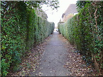 TQ2589 : Path from Market Place to Maurice Walk by David Howard