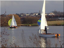 TQ2187 : Yachting on the Welsh Harp Reservoir by David Howard