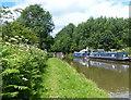 SJ7128 : Moored narrowboats along the Shropshire Union Canal by Mat Fascione