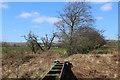 NS3356 : Aqueduct crossing the former Lochwinnoch Loop railway line by Thomas Nugent