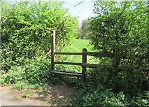 SO9875 : Third stile on Brown's Way footpath, Lickey by Roy Hughes