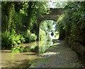 SJ7030 : Cheswardine Bridge No 56 by Mat Fascione
