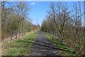 NS3458 : Lochwinnoch Loop Line cycle path by Thomas Nugent