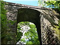 SJ6930 : High Bridge No 57 in the Woodseaves Cutting by Mat Fascione