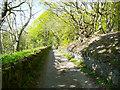 SE1125 : Wood Lane, Hipperholme by Humphrey Bolton