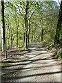 SE1126 : Wood Lane, Hipperholme by Humphrey Bolton