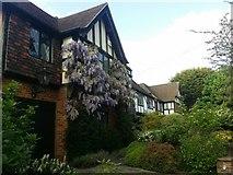 TQ2688 : House on Vivian Way, Hampstead Garden Suburb by David Howard