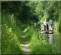SJ6931 : Narrowboat in the Woodseaves Cutting by Mat Fascione