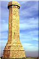 SY6187 : Hardy Monument, Black Down by Colin Park