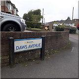 SZ0694 : East Howe: Daws Avenue by Chris Downer
