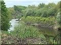SE3621 : River Calder, downstream from a pipe bridge by Christine Johnstone