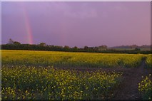 TM3964 : Sunset and showers, north-east of Saxmundham by Christopher Hilton