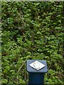 SK6437 : Trail marker, Cotgrave Country Park by Alan Murray-Rust