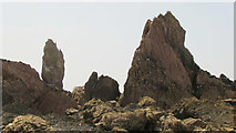SX6643 : Long Stone and other rocks by Derek Harper